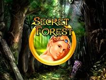 Secret Forest в игровом зале Вулкан